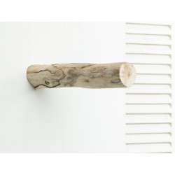 Driftwood coat hook