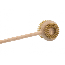 Brush for back and body
